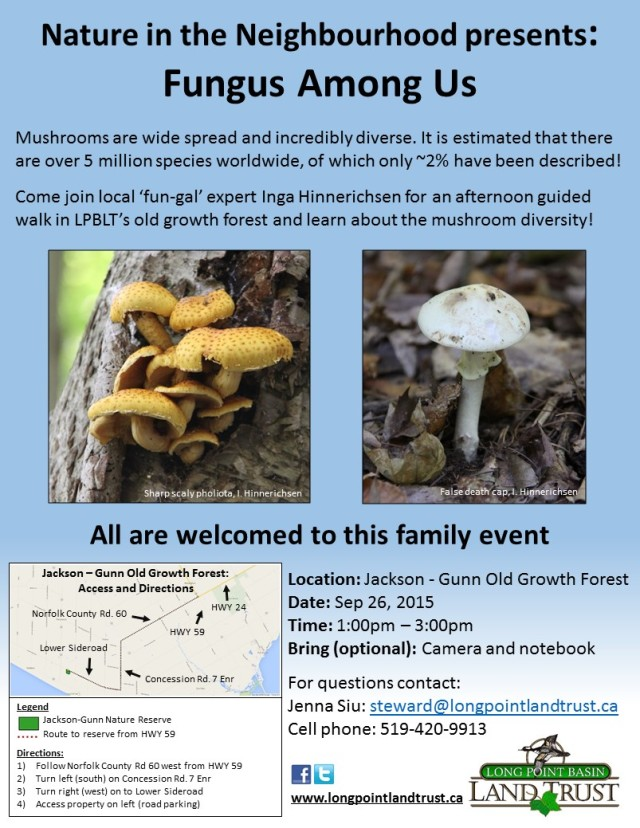 Fungus-walk