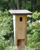 Bluebird Box K1__7813ce