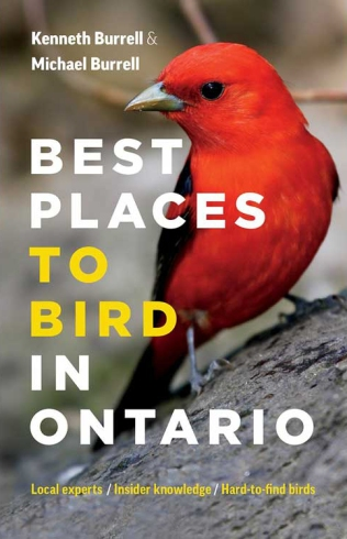 #1 - Best Places to Bird in Ontario